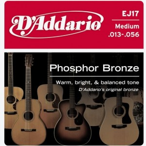 D'Addario Phosphor Bronze 13-56 Acoustic Guitar Strings
